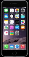 Telefon komórkowy Apple iPhone 6 Plus 16 GB